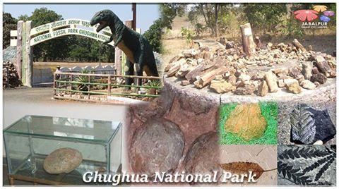 घुघुआ जीवाश्म नेशनल पार्क (Ghughuwa National Fossil Park)